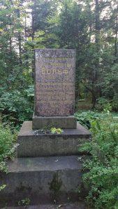 Памятник Э.Л. Вольфу