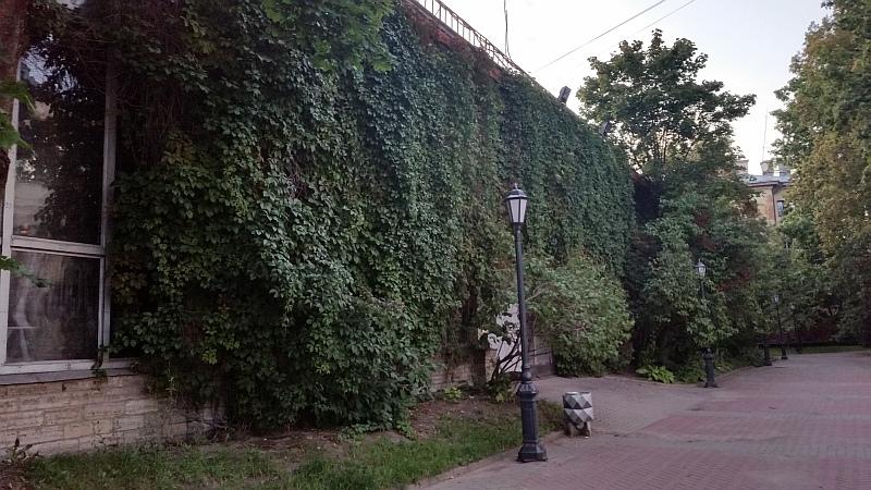"""Живая"" стена Малой сцены"