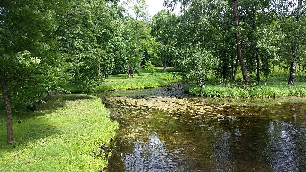 Живописный пейзаж парка